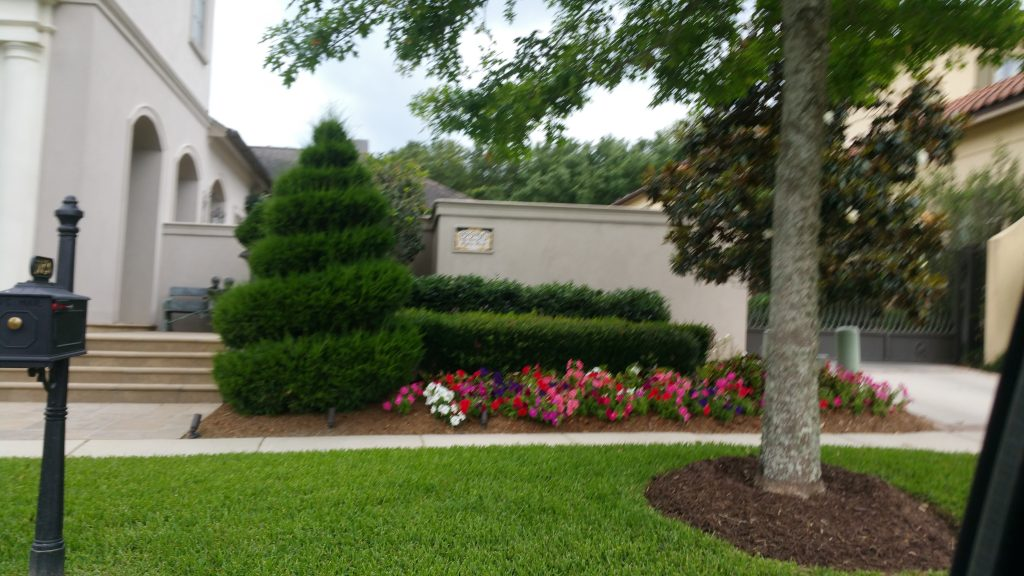 Landscape Maintenance Baton Rouge 225 454 9828
