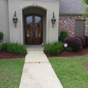 flowerbed cleanup and renovation