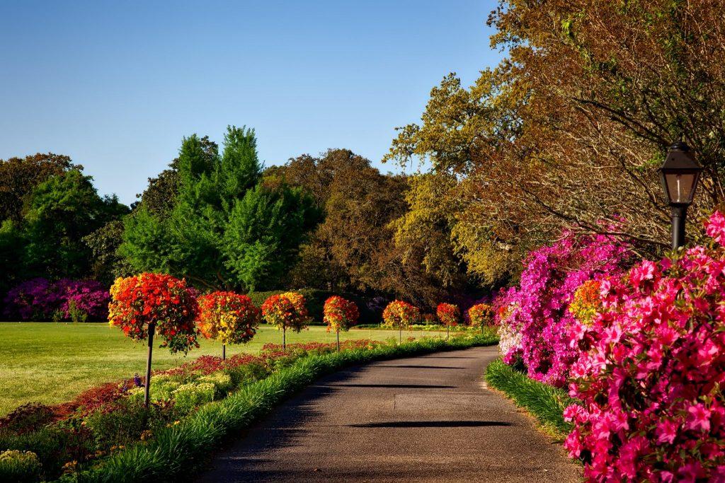 Landscape Maintenance Baton Rouge