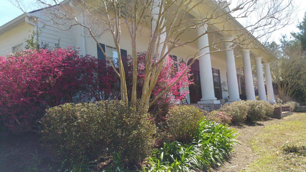 Landscape Maintenance Baton Rouge - 225-454-9828