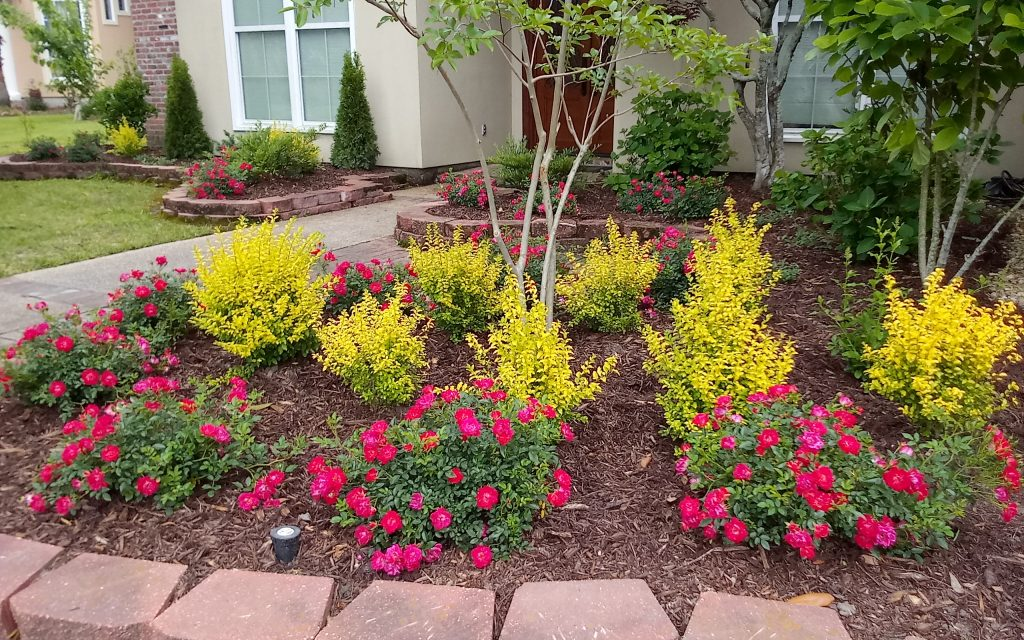 Flower Bed Clean Up Baton Rouge 225 454 9828